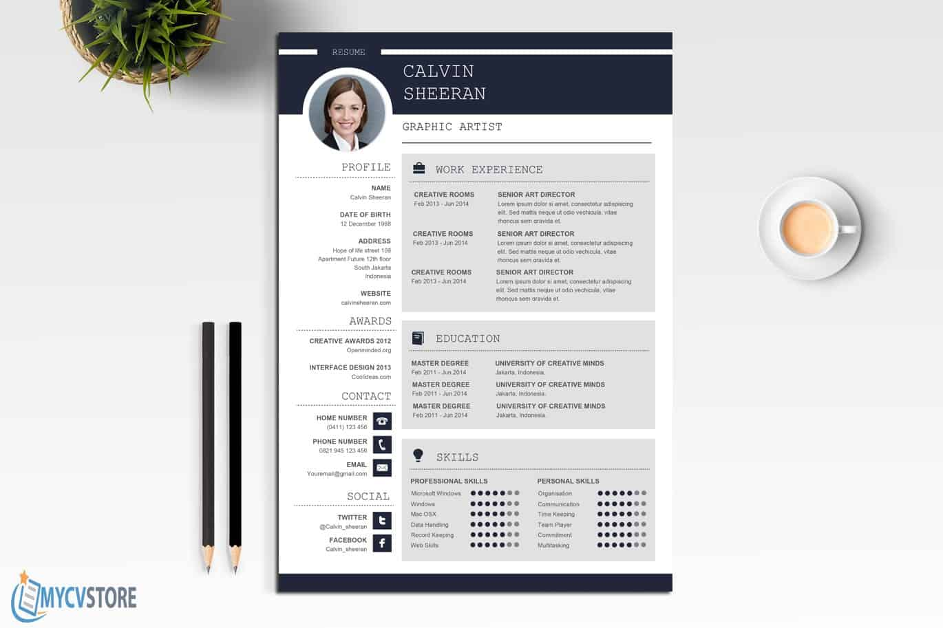 Professional CV MS Word Template