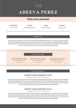 Simple Design Resume Template