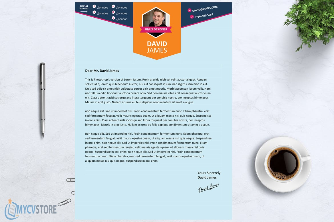 Colorful Stylish Cover Letter