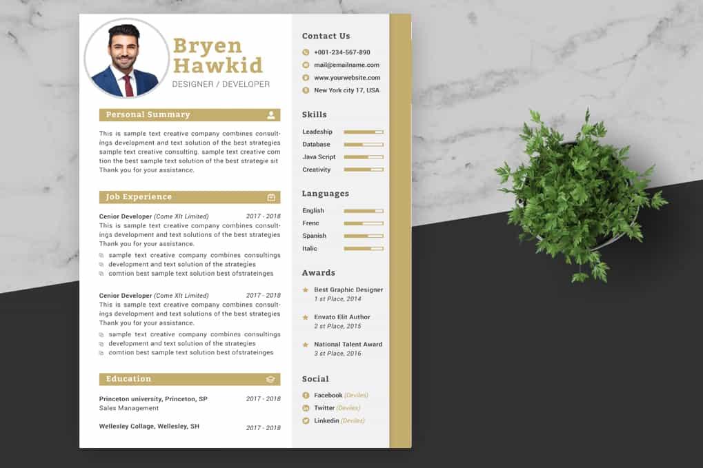 Design Manager CV