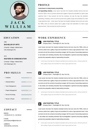 Creative Infographic Resume Template