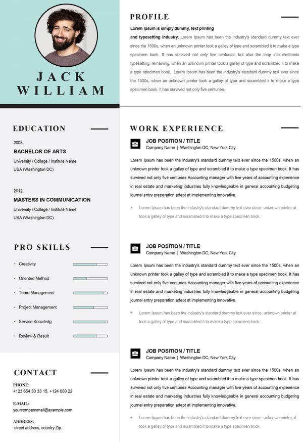 Creative Infographic Resume Template