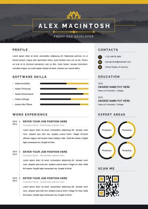 Classic Resume Word Format Template