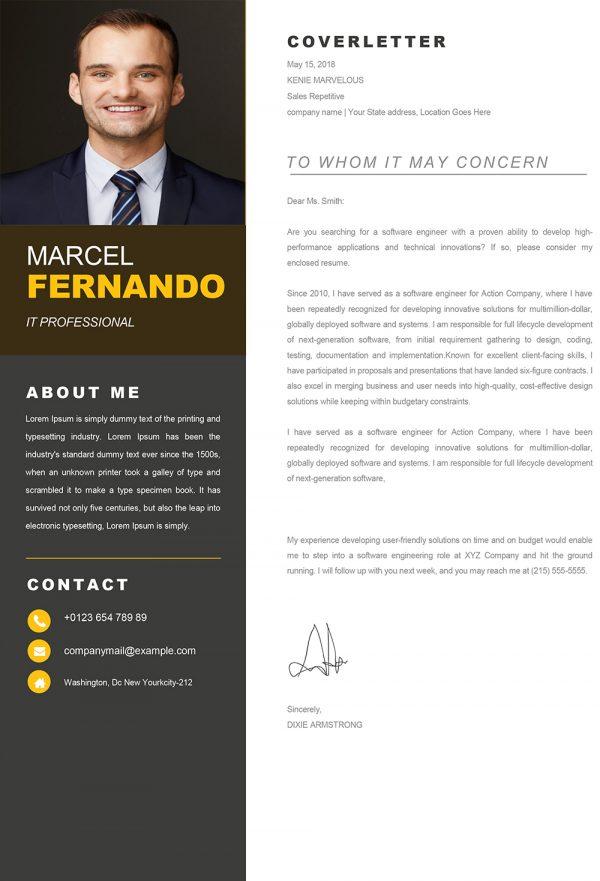 Professional Web Developer Cover Letter