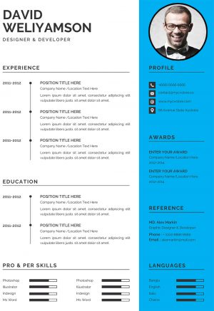 Clean Design CV Template 1